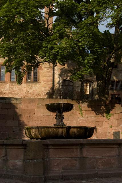 What Is Mds >> Handschuhsheim in Heidelberg – The Tiefburg